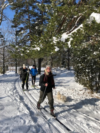 Ski in Tweed Sthlm 2018-03-03 (15)