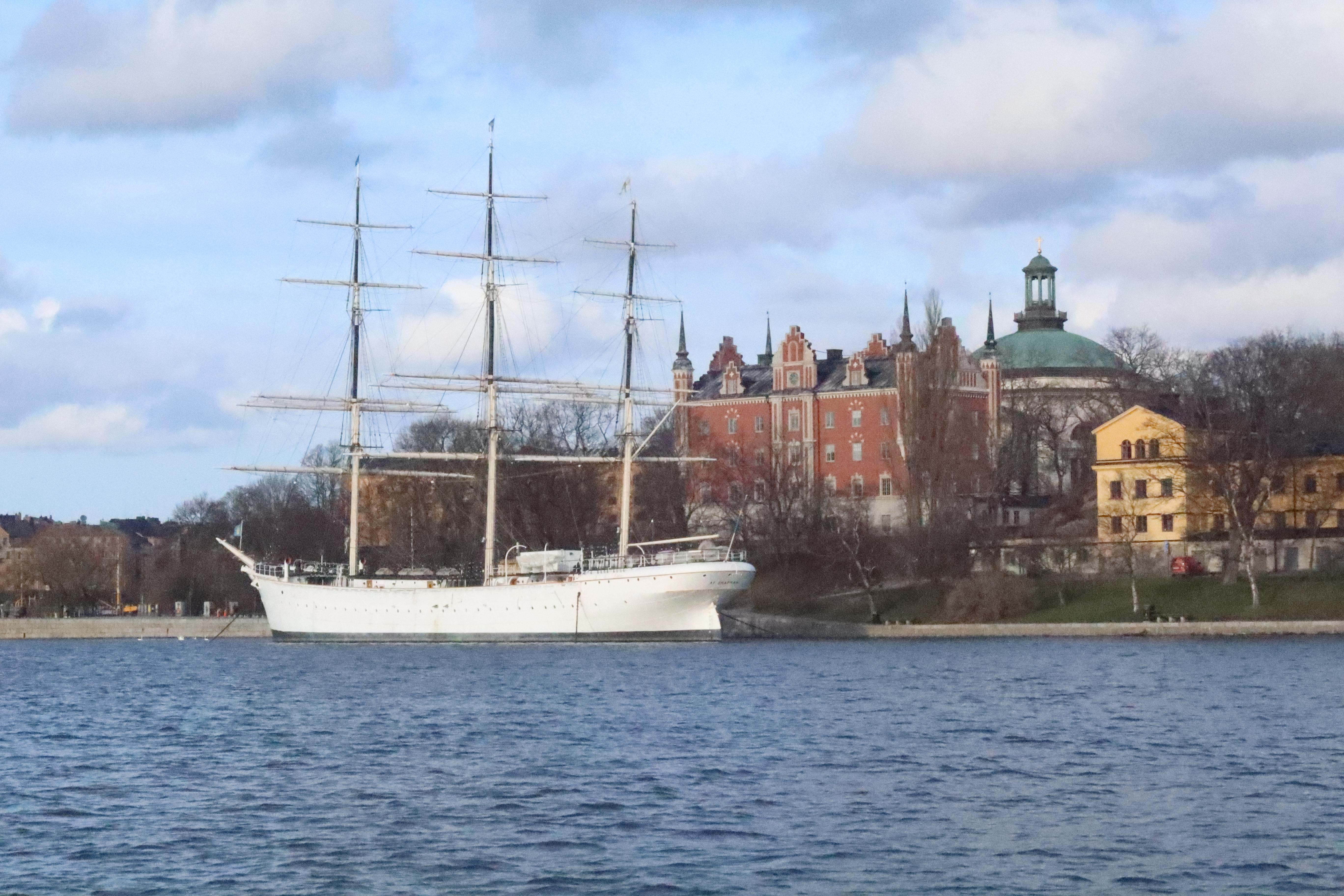 Ellen på Djurgården 2020-03-02 (3)