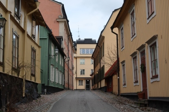 Ellen på Djurgården 2020-03-02 (44)