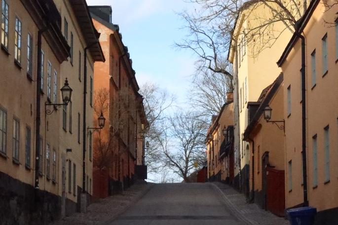 Ellen på Södermalm 2020-03-02 (70)
